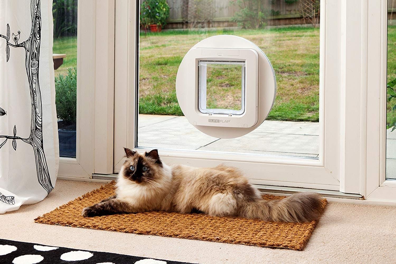 elektrische Katzenklappe