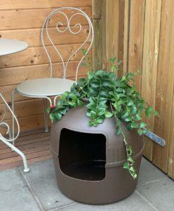 zweitbeste versteckte Katzentoilette
