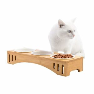 beste Futternapf für Katzen