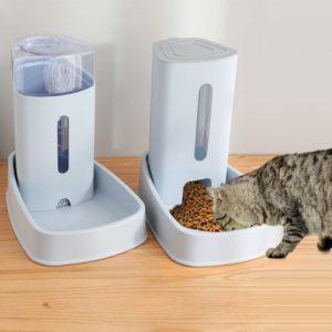 beste Futterautomat für Katzen