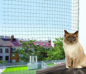 beste Katzennetz für Wohnungskatzen