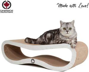 Kratzspielzeug für Katzen