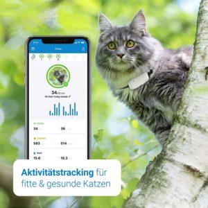 bester GPS-Tracker für Katzen